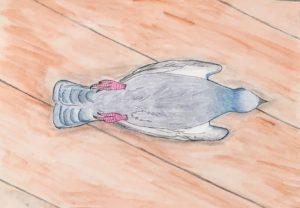 Duen Sprinter på ryggen