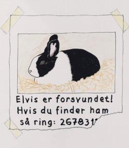 Et opslag med en efterlysning efter kaninen Elvis. Måske har Anna nisser på loftet.